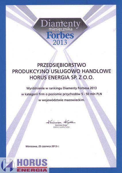 Wyróżnienie w rankingu Forbesa 2013